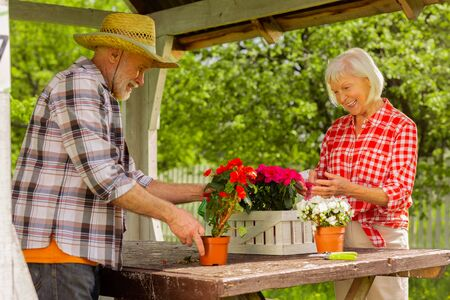 Husband helping wife. Bearded retired man wearing straw hat helping his wife watering flowers in pots