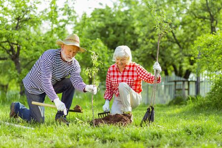 Enjoying summer day. Good-looking husband and wife enjoying summer day and planting trees Stock Photo