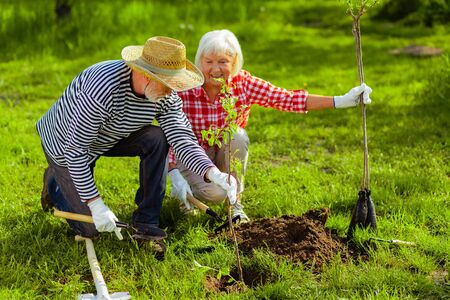 Summer time. Good-looking lovely husband and wife living in cottage house in summer planting trees