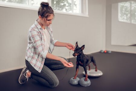 Woman showing bacon. Dark-haired woman training her black dog showing him piece of bacon