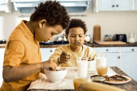 Before school. Sweet cereals and milk - wholesome breakfast for two concentrated little boys.