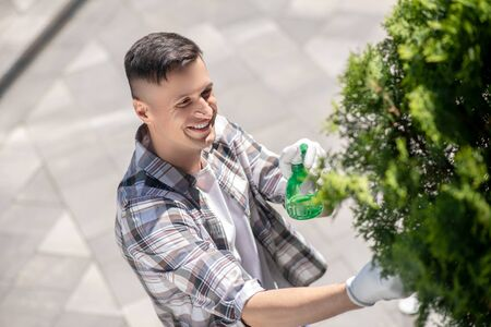 Gardening time. Smiling dark-haired male in protective gloves spraying tree in the yard