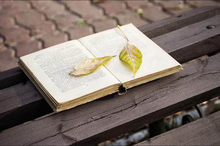 open book on a bench with an autumn leaf