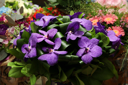 Bouquet of flowers with a dark purple orchids