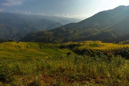 yuan yang: Beautiful Rice Terraces, South East Asia