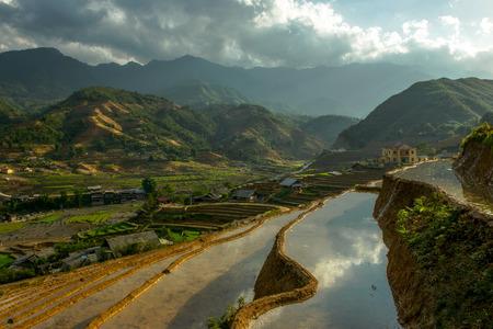 sapa: Sapa rice terrace, Vietnam