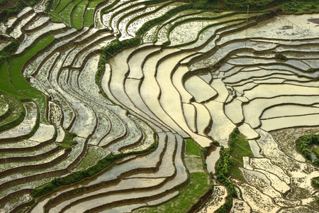 Birds-eye view of the rice terraces in rainy season sapa District, Lao Cai Province, Northwest Vietnam. Stock Photo