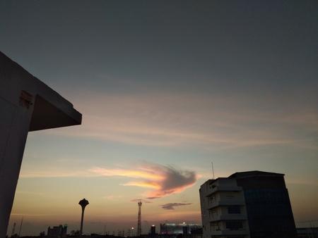 Bird cloud on sky