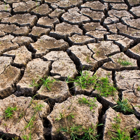Global warming concept of cracked ground,be arid Stock Photo - 8325653