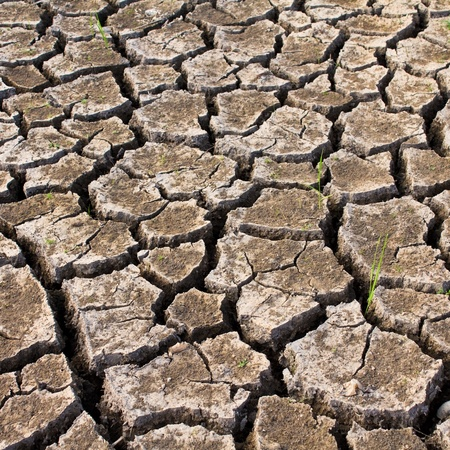 Global warming concept of cracked ground,be arid Stock Photo - 8406709