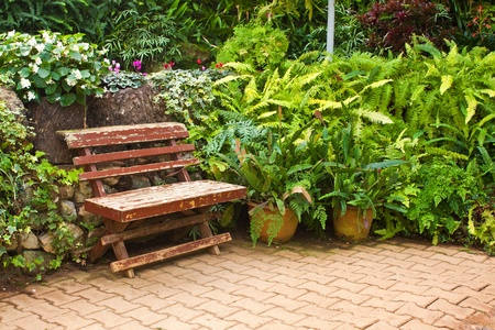 single wooden chair in the small garden photo