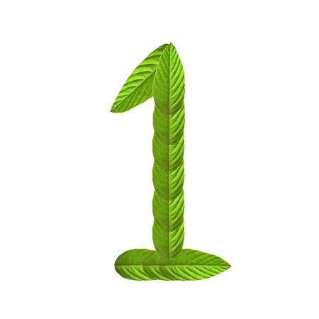 The Numbers made of lush green leaves photo