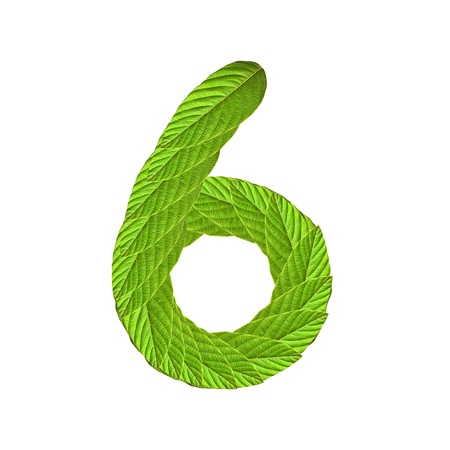 The Numbers made of lush green leaves Stock Photo - 9283953