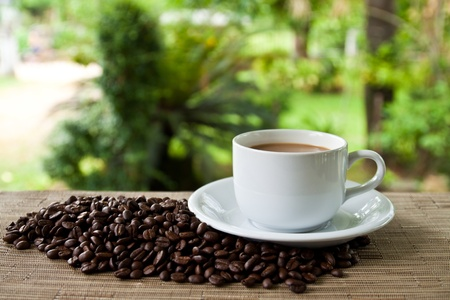 caffe: cup of coffee and stack seed Stock Photo