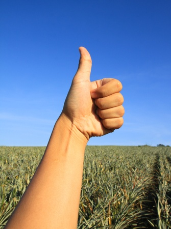 consensus: thumb with blue sky Stock Photo