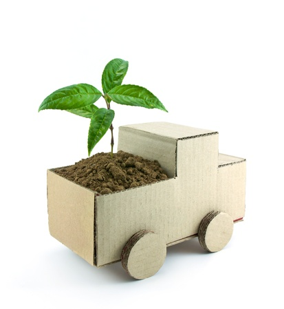 seedling in car isolated on white background, conservation concept
