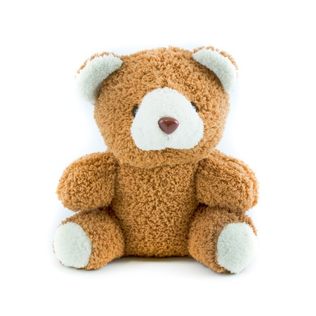 cuddly: teddy bear isolated on white background