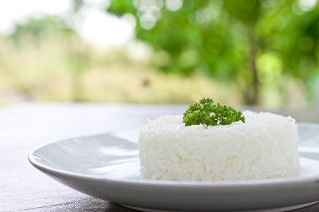 jasmine rice: plain rice on white plate