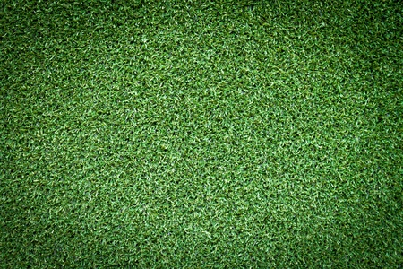 background of green grass Stock Photo - 13443923