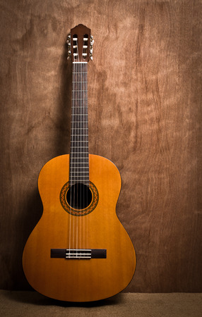 fingerboard: acoustic classical guitar with strings