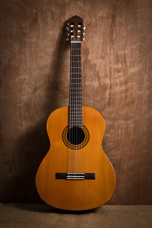 fretboard: acoustic classical guitar with strings