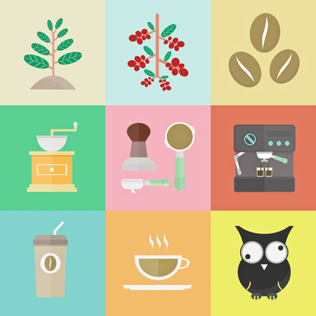 evolution of coffee, sprout to brewed espresso, illustration Vector