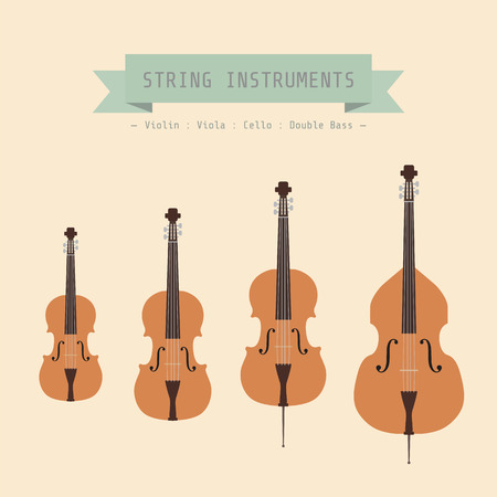 Musical Instrument String, Violin, Viola, Cello and Double Bass, flat style Vector