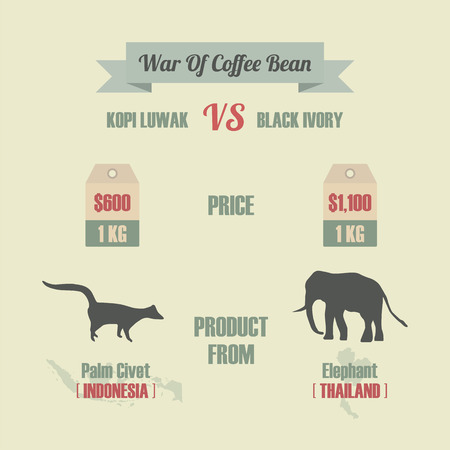 ivory: war of coffee bean, kopi luwak VS black ivory, the most expensive coffee in the world Illustration