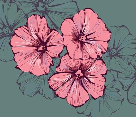 pistils: Image of wildlife plants three bud Morning Glory Illustration