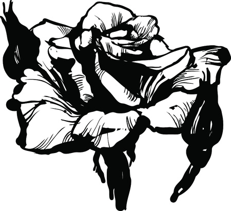 black and white line drawing: gorgeous rose bud black and white drawing sketch
