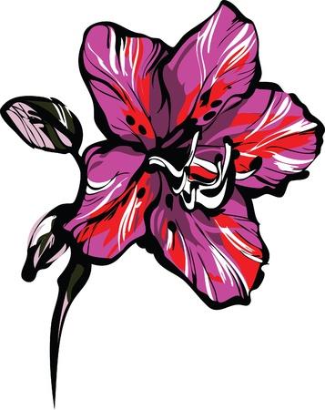 a rose five petals on a stem Stock Vector - 9934054