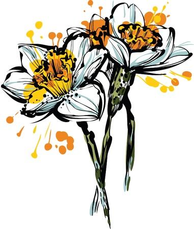 PiÄ™kna farba obraz trzech kwiaty Narcyz