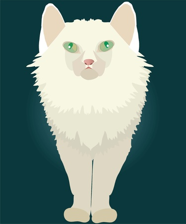 green eyes: white cat with green eyes Illustration