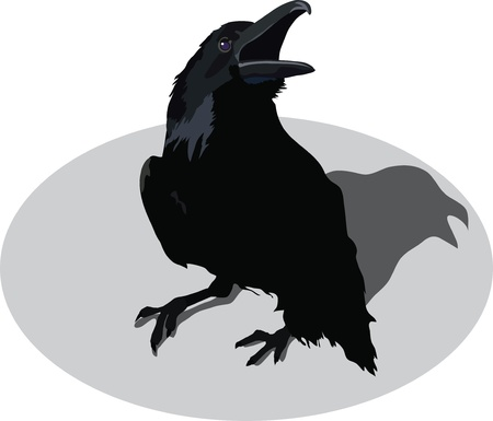 swelled: raven