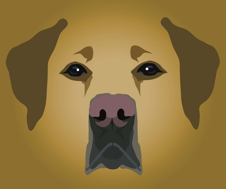 muzzle of dog Stock Vector - 10644477