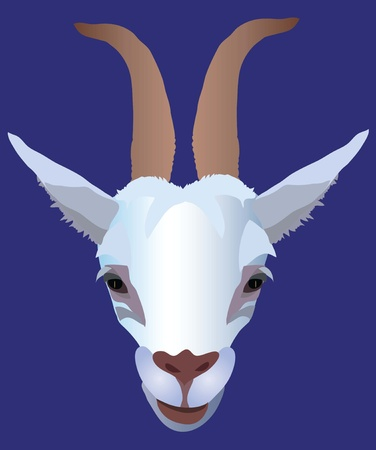 goat Stock Vector - 10644456