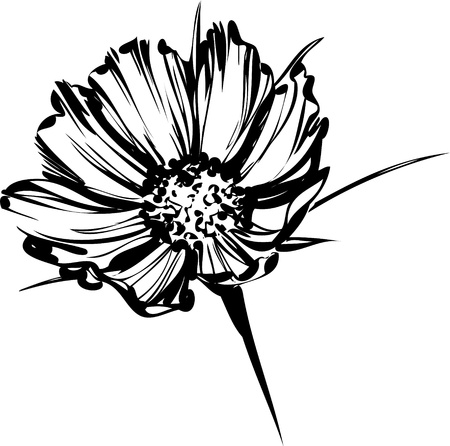 een afbeelding van de natuur schets van een wilde bloem
