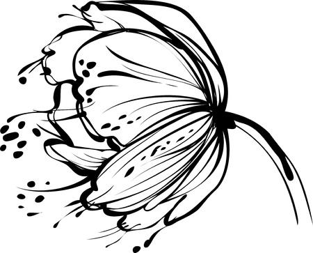 zwart wit tekening: een afbeelding van de natuur witte bloemknop Stock Illustratie