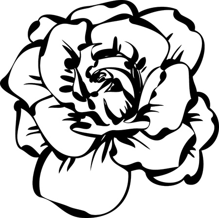 a black and white sketch of rose Vector