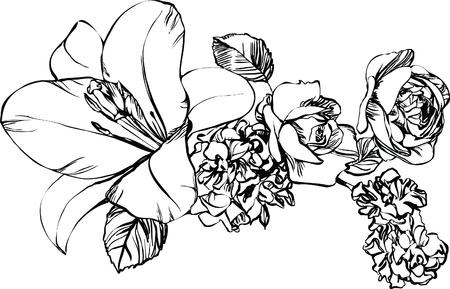 zwart-wit foto van de natuur bloem