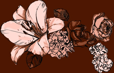 a picture of nature flower Vector