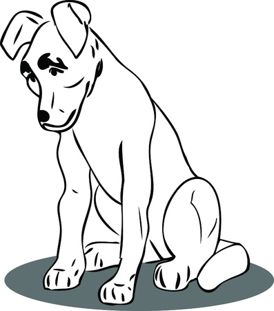 a black and white picture dog sitting Stock Vector - 10740076