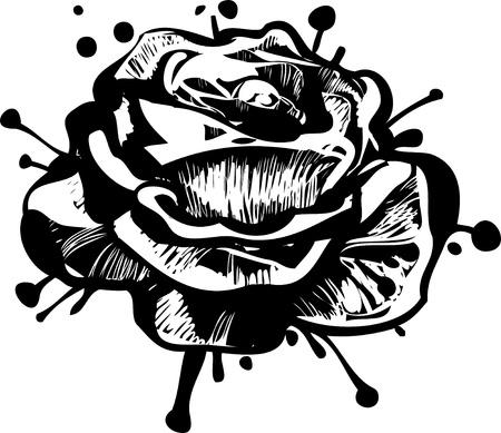 flower garden blossoming bud of a rose Vector