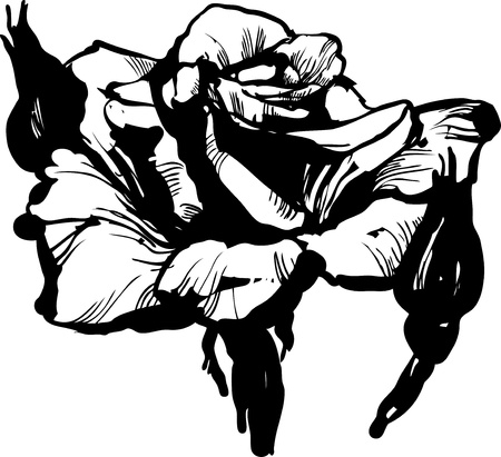 Soda sketch of a flower resembling a rose Vector