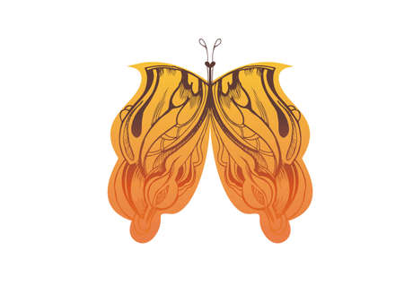 aside:  abstract graphic design is a butterfly orange