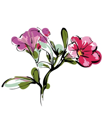 a sketch of branch with two pink buds and foliage Illustration