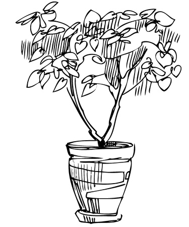 sketch room plant flower in a pot Vector
