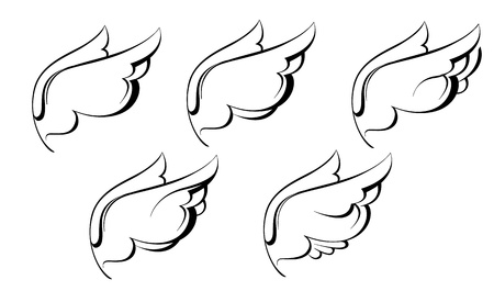 wings isolated: sketch of the wings black and white graphics