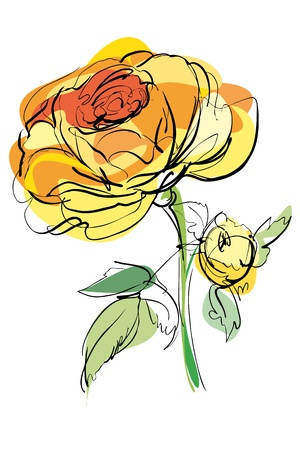 sketch of yellow rose on a white background Illustration