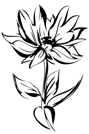 sketch out: sketch of blossoming out flower on a stem